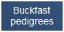 Buckfast pedigrees